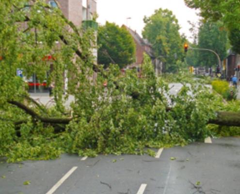 Immobilienmakler Zirm berät wenn es um die richtige Absicherung Ihrer Immobilie gegen Sturmschäden geht